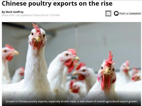"""鸡肉短缺,英国肯德基告急!网友支招:将来""""吃鸡""""还要靠中国"""