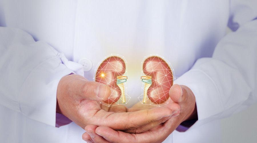 慢性肾炎要三分治七分养