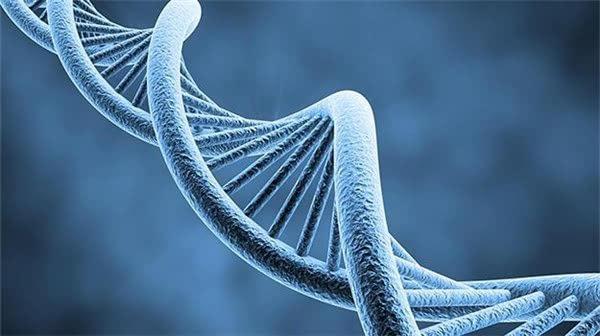 错误率达40%!消费级基因检测不是算命神器