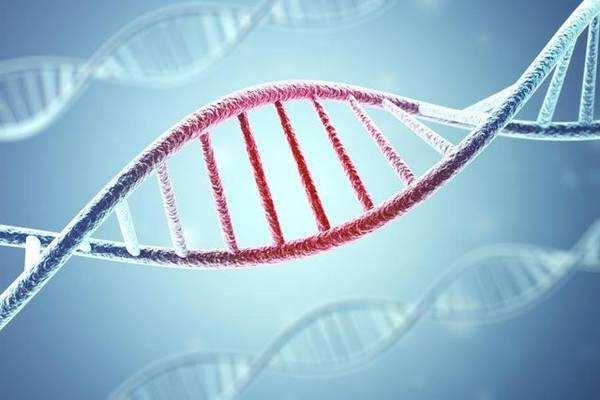 浙江大学发现了100多个新的乳腺癌靶标!