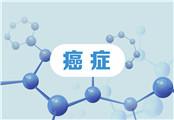 临床肿瘤学杂志:中国专家研究出克服靶向耐药新成果