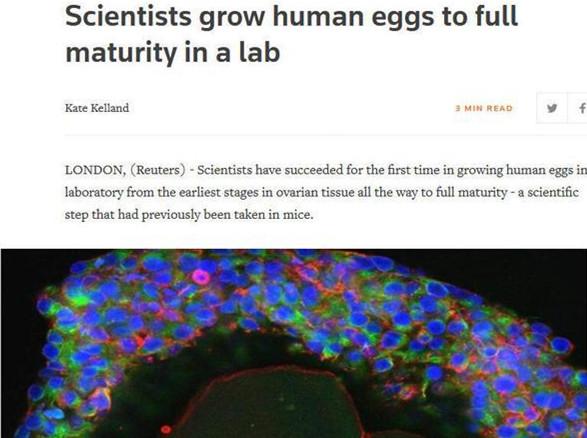 艾滋新药、卵子成熟…这些医学突破关于你我
