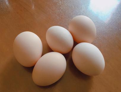 """湖北神丹称从未宣传""""好土""""鸡蛋源自散养鸡"""