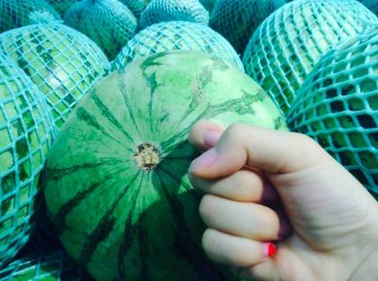 如何挑到汁多肉甜的好西瓜?学会3招,一挑一个准!