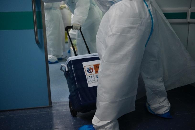全国已有吉林舒兰等三地感染病例,还未发布传染源