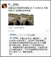 上海野生动物园一工作人员遭熊攻击死亡,猛兽区已暂停开放