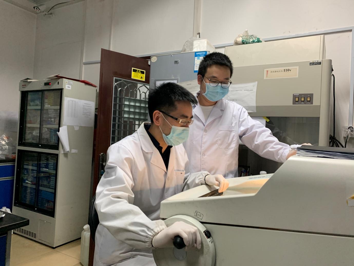 复旦大学黄志力团队研究揭示中药枣仁安神胶囊作用及机制
