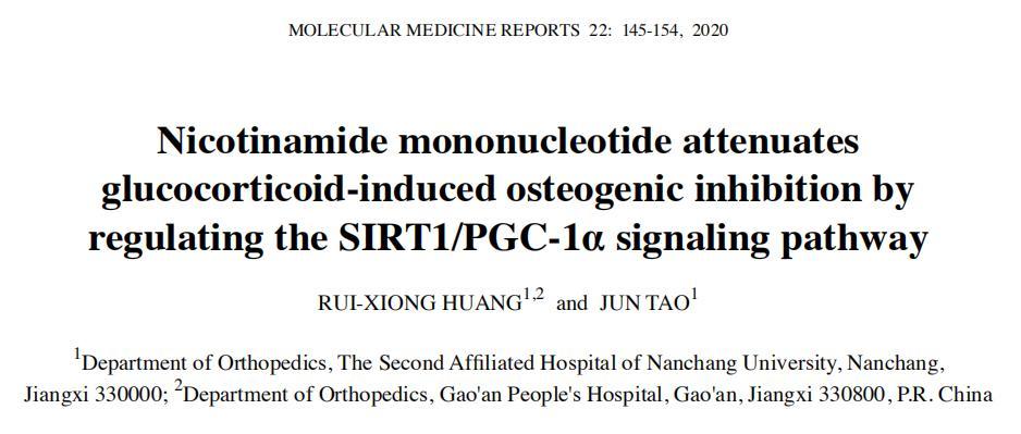 NMN可增加造骨蛋白活性,有助预防骨质疏松