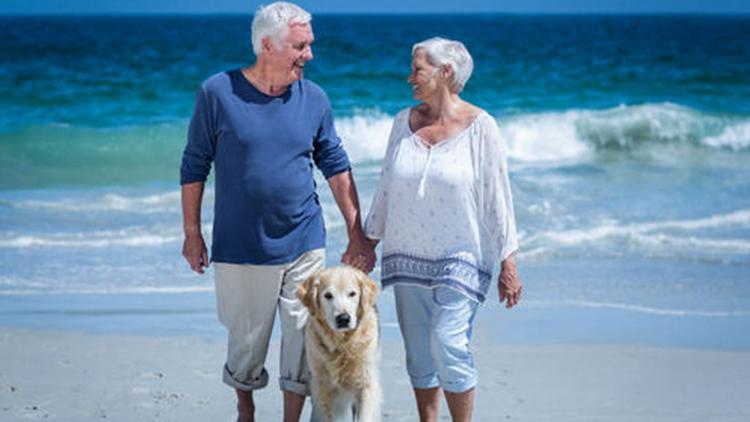 相互依赖关系高 会让人更长寿