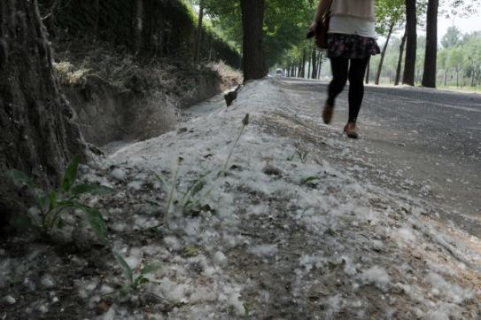 清明节北京惊现尘卷风,做好预防