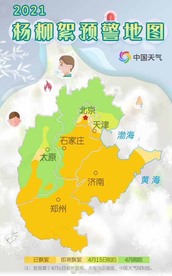 下周杨柳飞絮迎来高发期,为何北京的飞絮总不好?