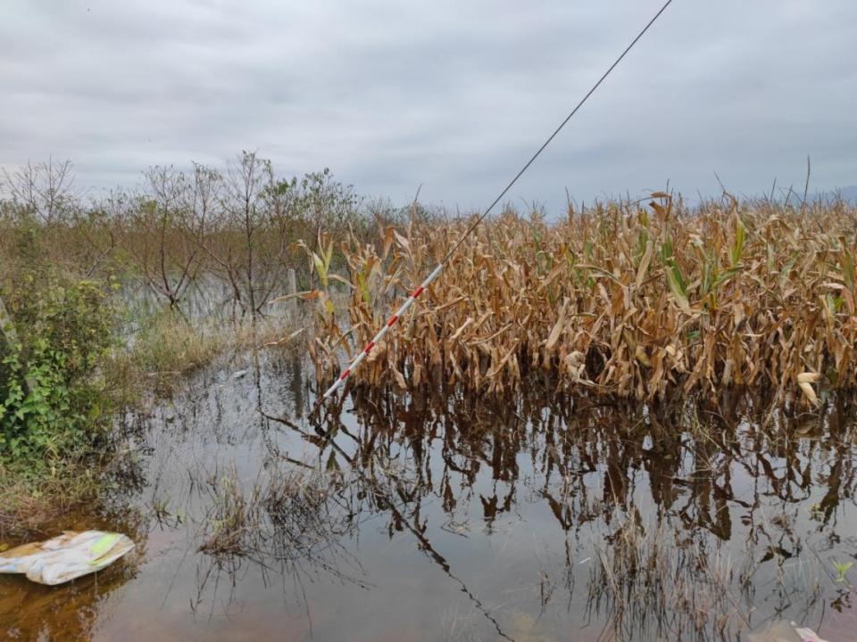 山西河津十万亩滩涂成蓄洪区,多地急需医疗物资